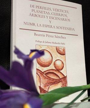 """""""De perfiles, vértices, planetas, cuerpos, árboles y escenarios y Numb, la espera sostenida"""", de Beatriz Pérez Sánchez"""