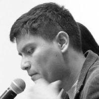 Luis David Palacios