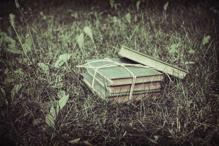 Libros en custodia, por Luis Guillermo Franquiz