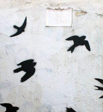 De migraciones, por Sergio Holas Véliz