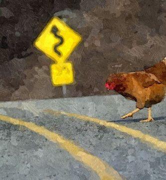 Mibonachi para el pollo que cruzó la carretera, por Carlos Alberto Villegas Uribe