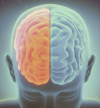 El cerebro racista, por Amira Armenta