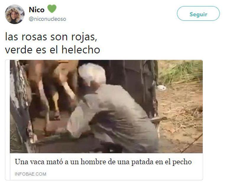 """Micropoesía de titular: shock y humor a raíz de """"Las rosas son rojas"""", por Daniel Escandell Montiel"""