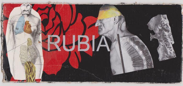 Rubia, por Wilfredo Carrizales
