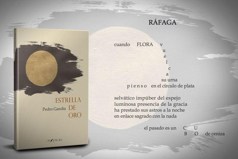 """""""Estrella de oro"""", de Pedro Gandía"""