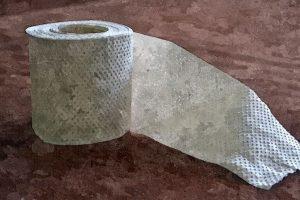 El último rollo de papel higiénico, por Melanie Taylor Herrera