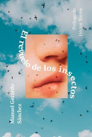 """""""El revuelo de los insectos"""", de Manuel Gerardo Sánchez"""
