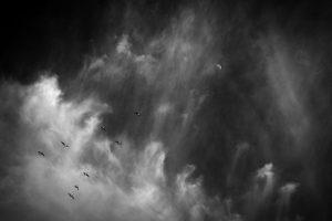 Los profetas de los mundos posibles, por Salvador Montoya