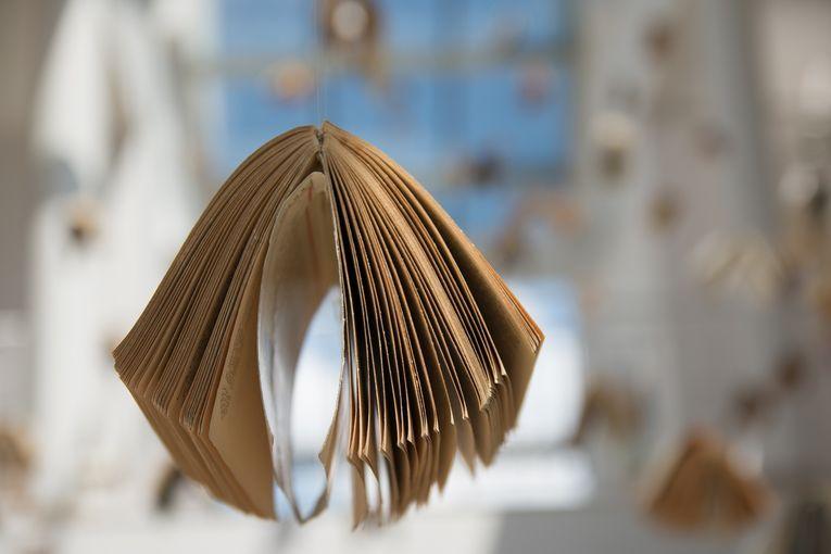Taller de lectoescritura poética de Letralia