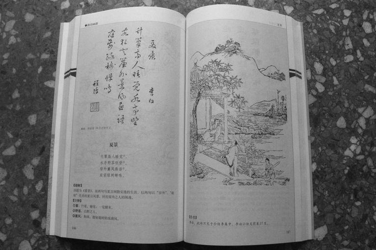 Paisaje de verano, por Li Bai