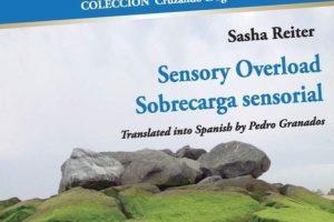 """Sensory Overload / Sobrecarga sensorial"", de Sasha Reiter"