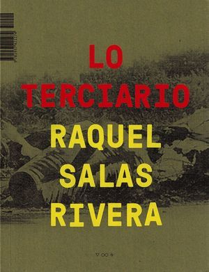 """""""lo terciario"""", de Raquel Salas Rivera"""