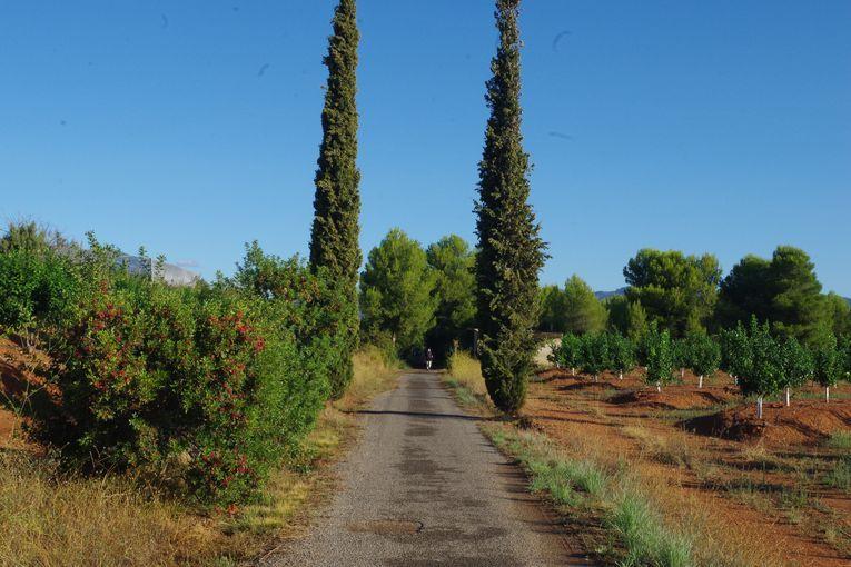 Vía verde (Valencia), por Vicente Adelantado Soriano