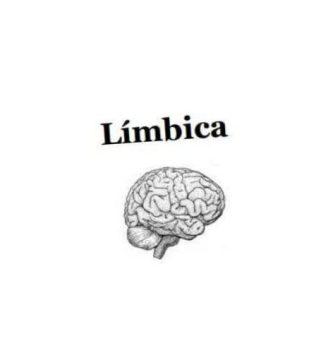 """""""Límbica"""", de Vanesa Almada Noguerón"""
