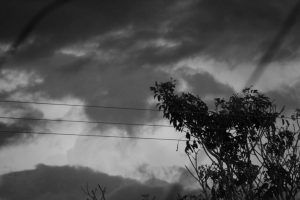 Del aire como taumaturgia, por Wilfredo Carrizales