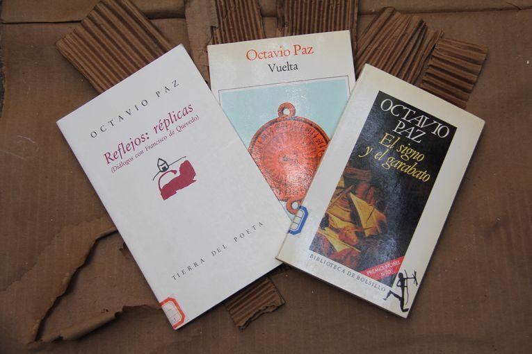 A mi modo leo y hojeo, por Wilfredo Carrizales