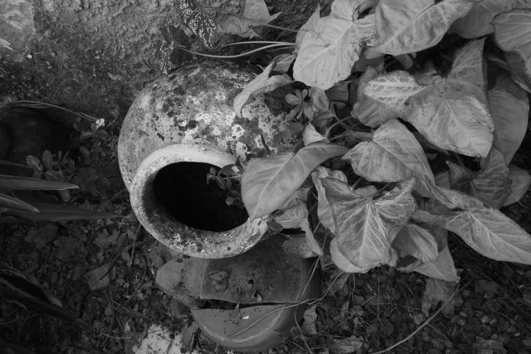 Aquellas cosas ocultas, por Wilfredo Carrizales