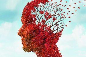 VII Certamen Literario Asociación de Familiares de Enfermos de Alzheimer de Mijas (AFAM)