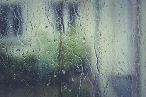 Llueve, por Vicente Adelantado Soriano
